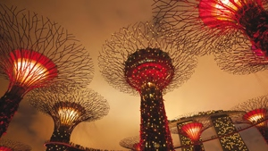 Changi Airport: Singapore's Finest Offering
