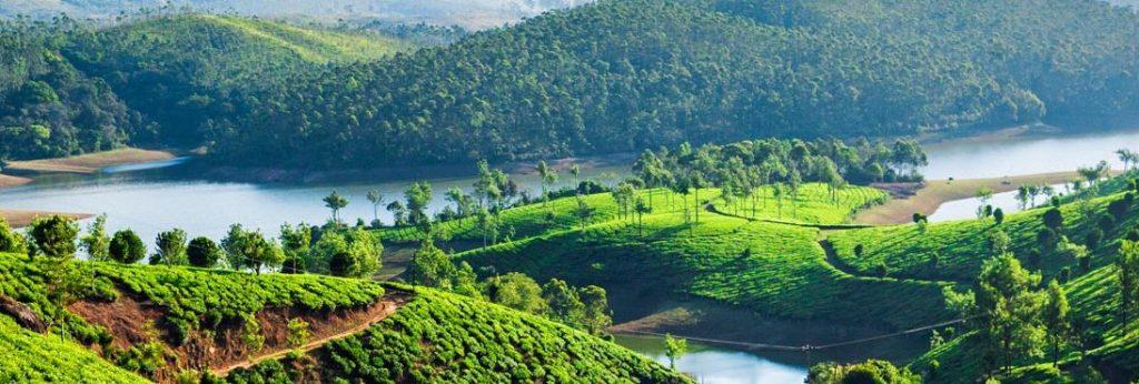 Kerala Caressing Romance With Nature Sotc Blog
