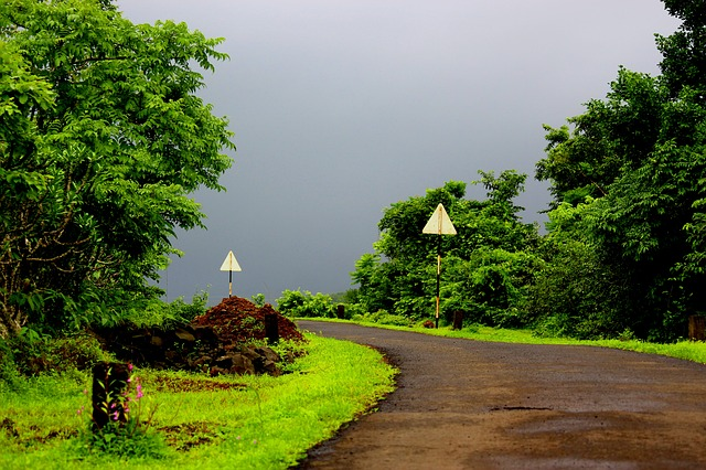 10 Places Within 250 Kms of Mumbai for a Perfect Monsoon Getaway!